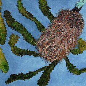 blue mountains artist 16